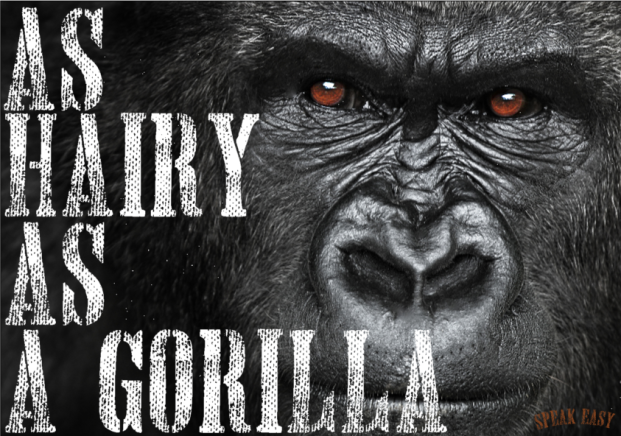hairy-as-a-gorilla